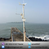CER anerkannter Turbine-Generator des Wind-300W für Überwachung