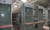 Couche système des cages de poulet ou de volaille l'équipement agricole