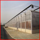 Estufa de vidro de Commerical da Multi-Extensão da agricultura para o jardim