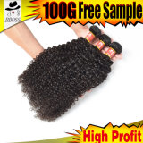 Cheveu brésilien chaud de la vente en gros 9A Remy de vente