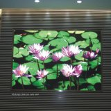 HD P8 MDS Outdoor Full Color LED Screens Display