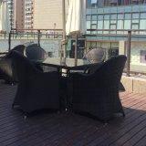 Линия стул сада приём гостей в саду мебели патио