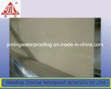 Pre-toegepaste Zelfklevende Waterdicht makende HDPE met Vlotte Oppervlakte