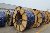 Câble d'alimentation blindé de fil de cuivre de PVC/XLPE de température élevée