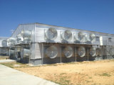 Estructura de acero prefabricadas construcción pollo