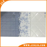 tegels van de Muur van de Badkamers van 300*600mm 3D Inkjet Waterdichte