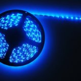 Alta luminosità 3528 strisce flessibili 9.6W/M di 120LEDs 8mm LED