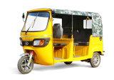 3000W 5seatsの電気乗客の三輪車