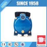 Bomba de água centrífuga de vários estágios da alta qualidade para a venda Mh1300