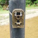 熱い販売12MP 1080Pは野生の道ハンチングカメラを防水する