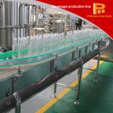 voll automatische komplette Flaschen-Wasser-Füllmaschine des Haustier-3-in-1