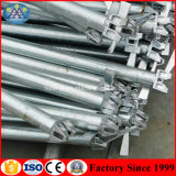 Реальные заводе в Фошань стальных оцинкованных Layher Ringlock основы для продажи