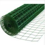 Acoplamiento de alambre soldado cubierto PVC del orificio de 2 pulgadas/acoplamiento soldado/acoplamiento de alambre