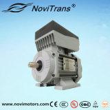 750 Вт переменного тока мотор переменной частоты вакуумного усилителя тормозов (YVF-80C)