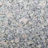 Lastra poco costosa bianca del granito