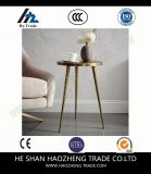 Hzct022 에스테르 커피용 탁자는 가구를 금속을 붙인다