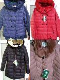 Nouvelle Mode coton Veste manteau de coton pour les femmes et des Dames