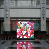 Heet verkoop P3mm Scherm van de Vertoning van de Kleur van SMD2121 het Zwarte Volledige Binnen