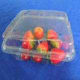 Conteneur de nourriture en plastique de vente chaud de catégorie comestible