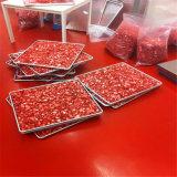 Vakuumfrost-trockener Lyophilisator für Nahrung für Haustiere