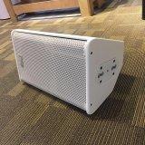 Do altofalante profissional branco do estágio do monitor de uma cor de 10 polegadas equipamento audio (PS10 - TACTO)