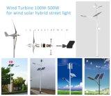 generatore di energia eolica di 300W Maglev per l'applicazione domestica