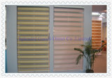 Roller Zebra Blinds Fabrics (SGD-R-3013)