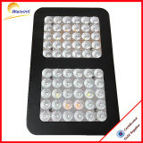 O crescimento de plantas de interior LED do sistema crescer Light 300W