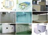 Sala fria para frutos e produtos hortícolas