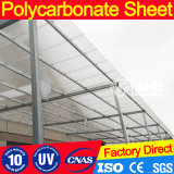 Garantia de 10 anos Clear Polycarbonate Twin Wall Sheet