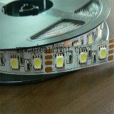 Cinta de la luz de la Doble-Fila 24V 5050 LED del surtidor de China