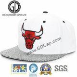 Moda acrílico Logotipo personalizado serigrafía plana en relieve el hiphop Gorra Snapback