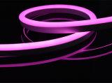 Indicatore luminoso flessibile decorativo della corda 12V/24V/120V/230V del giardino con IP67