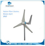 turbina verticale di energia eolica di asse di Vawt di fuori-Griglia delle lamierine 300W cinque
