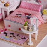 Casa de muñeca del ratón de Caton Micky para el juguete de la educación de DIY