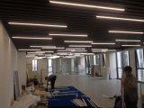 상업적인 점화를 위한 LED 선형 빛