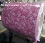 En la bobina de acero prebarnizado diseño de flor de la bobina de un revestimiento de zinc de color