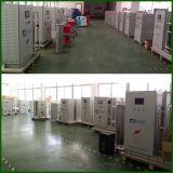 Ozon-Generator-Sterilisator für Lebensmittelindustrie