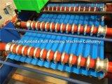Roulis de panneau de tuile et de mur de toit de tôle d'acier d'exportation formant la machine