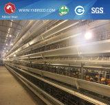 De Kooi van de Laag van de kip met Automatisch het Voeden Systeem voor het Landbouwbedrijf van de Kip van het Ei van Zambia
