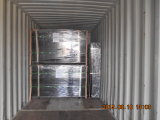 PVC Revestido Galvanizado Wire Mesh Fence / Double Iron Wire Esgrima (XMS45)
