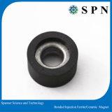 電気アプリケーションのための亜鉄酸塩の注入の磁石