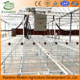 Berieselung-System für landwirtschaftliches Gewächshaus
