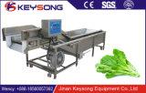 صناعيّ آليّة عادية ضغطة فقاعات [وشينغ مشن] نباتيّة