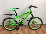2017 جيّدة تصميم أطفال درّاجة [سر-كب138] مع [ديسك برك] وشوكة تعليق