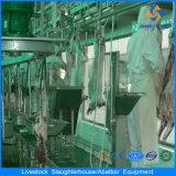 مسلم [سلوغتينغ] آلة صناعة خروف عمليّة ذبح تجهيز