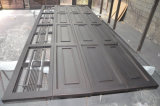 Portes sectionnelles résidentielles de garage de fer avec la glace