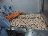 Напряжение питания на заводе туннеля быстрый морозильной камере IQF замороженные пиццы или тесто для цепи