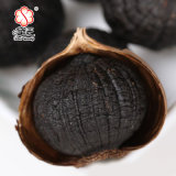 100% natürlicher gegorener schwarzer Knoblauch