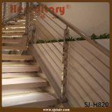 屋内のためのシンプルな設計の正方形の現代鋼鉄柵(SJ-H820)